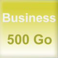Business 500 Go
